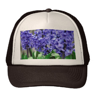 Hyacinth Trucker Hat
