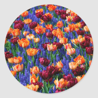 Hyacinth Tulip Garden Cotillion Classic Round Sticker