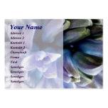 Hyacinthe Plantillas De Tarjetas Personales