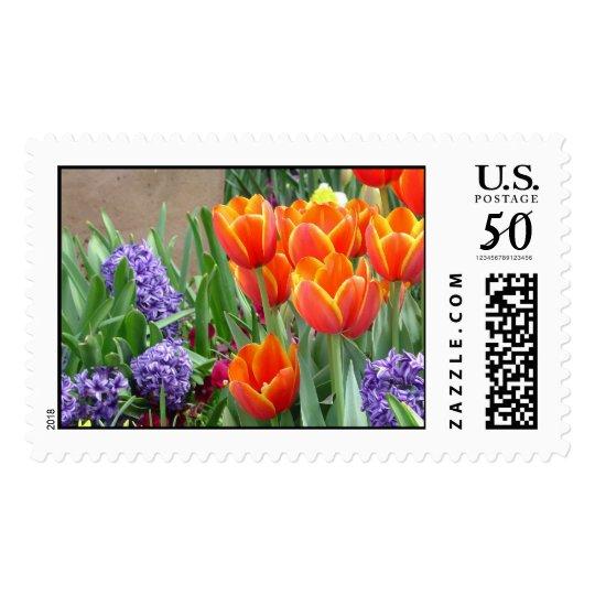 Hyacinths and Orange/Yellow Tulips Postage