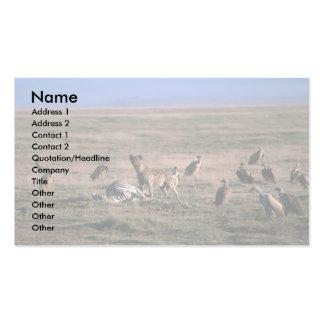 Hyaena manchado - en matanza de la cebra, con los  tarjetas de visita