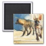 Hyaenas rayado 2010 imán cuadrado