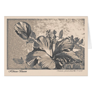 Hybiscus blossom greeting card