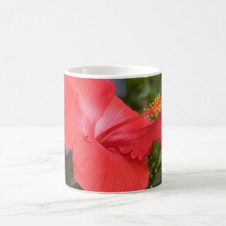 hybiscus classic white coffee mug