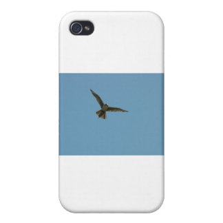 hybrid falcon case for iPhone 4
