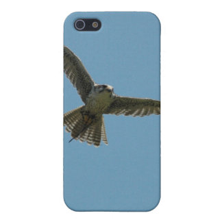 hybrid falcon ipod touch case
