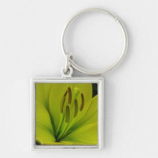 Hybrid Lily named Trebbiano Keychain
