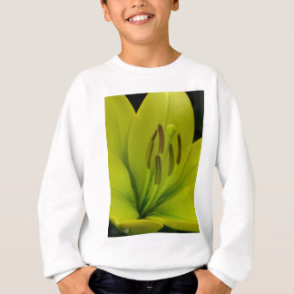 Hybrid Lily named Trebbiano Sweatshirt