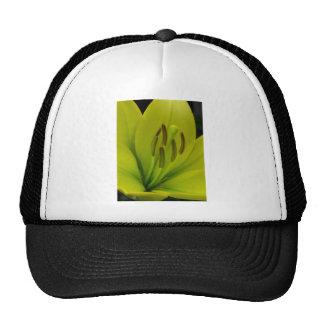 Hybrid Lily named Trebbiano Trucker Hat