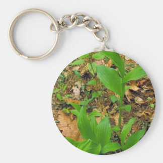 Hybrid of Prairie lady's slipper and Yellow lady's Key Chains