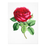 Hybrid Perpetual Rose - Napoleon III Personalized Invitation