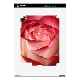 Hybrid Tea Rose Decal For The iPad 2