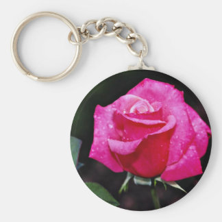 Hybrid Tea Rose 'First Prize' White flowers Key Chain