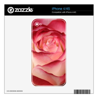 Hybrid Tea Rose iPhone 4S Skin