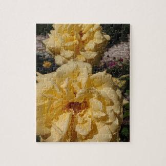 Hybrid Tea Rose Landora Puzzle