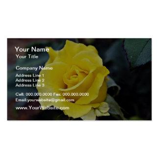 Hybrid Tea Rose Lanvin White flowers Business Cards
