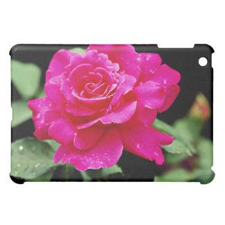 Hybrid Tea Rose 'Pink Peace' White flowers Cover For The iPad Mini