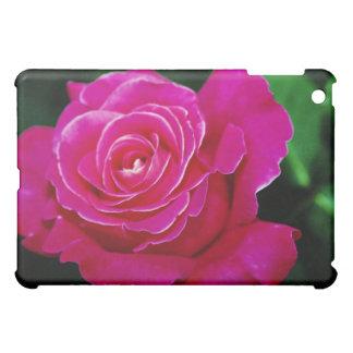 Hybrid Tea Rose 'Pink Peace' Yellow flowers iPad Mini Cover