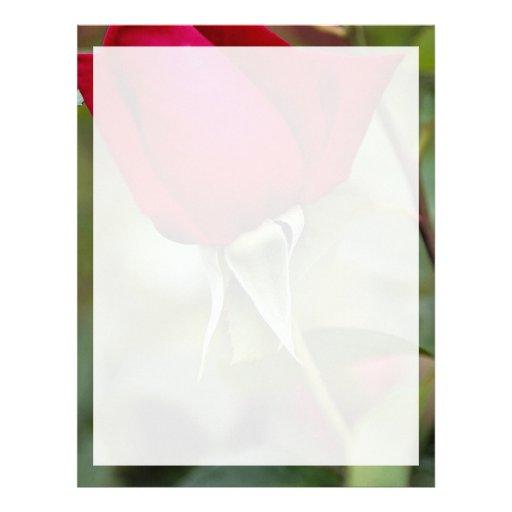 Hybrid Tea Rose Roses Letterhead