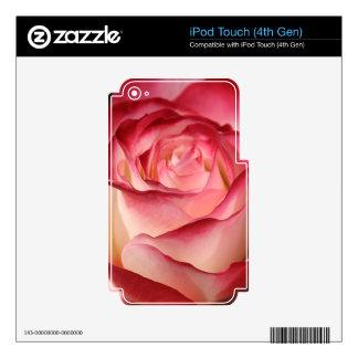 Hybrid Tea Rose Skins For iPod Touch 4G