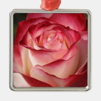 Hybrid Tea Rose Square Metal Christmas Ornament