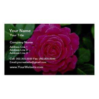 Hybrid Tea Rose Tiffany leaves White flowers Business Card Templates