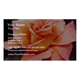 Hybrid Tea Rose White flowers Business Card Template