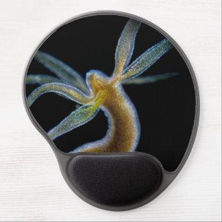 Hydra Alfombrilla De Raton Con Gel
