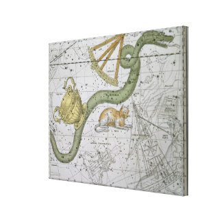 Hydra, from 'A Celestial Atlas', pub. in 1822 (col Gallery Wrapped Canvas