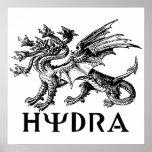 Hydra Impresiones