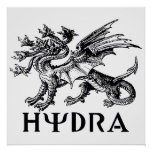 Hydra Póster