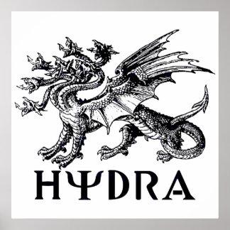 Hydra Print