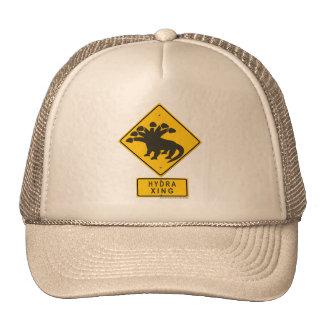 Hydra XING Mesh Hats