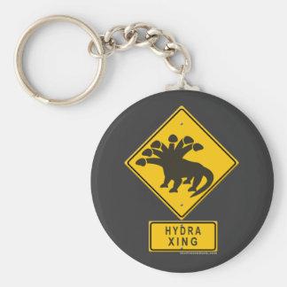 Hydra XING Keychain