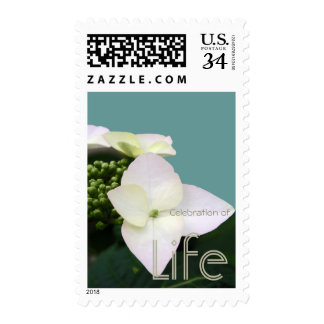 Hydrangea 1 Celebration of Life Postage
