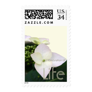Hydrangea 6 Celebration of Life Postage