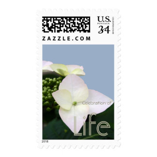Hydrangea 7 Celebration of Life Postage