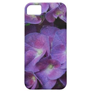hydrangea-96 jpg iPhone 5 protectores