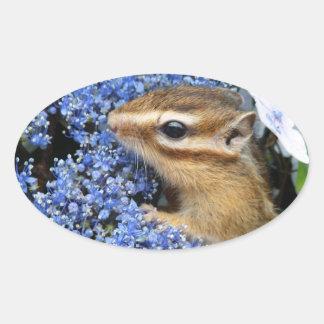Hydrangea and Chipmunk (4) Oval Sticker