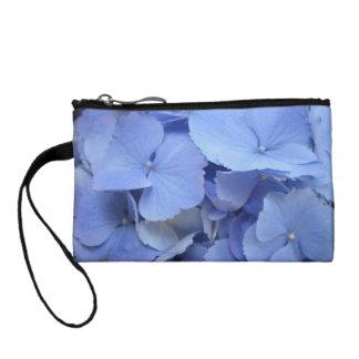 Hydrangea azul bonito