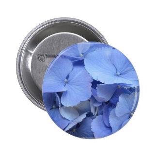 Hydrangea azul bonito pins