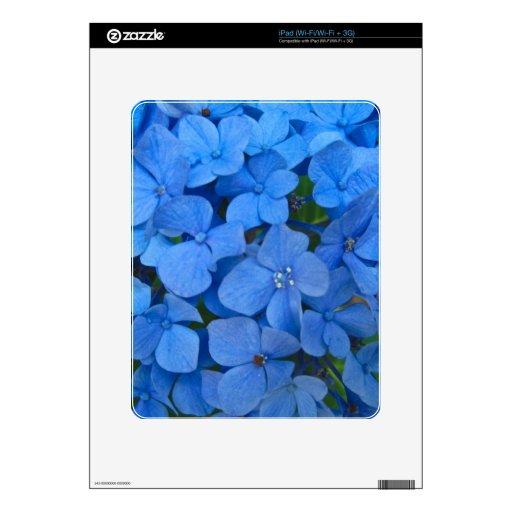 Hydrangea azul brillante skins para iPad