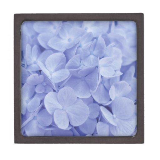 Hydrangea azul cajas de regalo de calidad