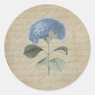 Hydrangea azul del vintage con caligrafía antigua pegatina redonda