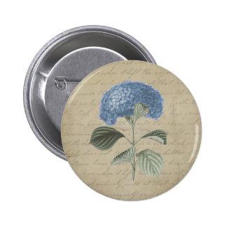 Hydrangea azul del vintage con caligrafía antigua pin