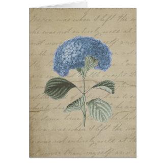 Hydrangea azul del vintage con caligrafía antigua tarjeta de felicitación