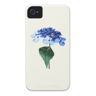 Hydrangea azul delicado de Lacecap Case-Mate iPhone 4 Protector