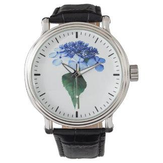 Hydrangea azul delicado de Lacecap Relojes De Mano