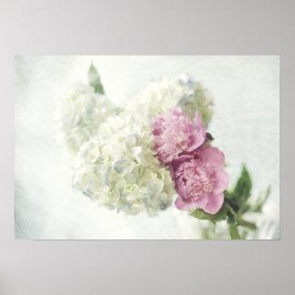 Hydrangea azul e impresión rosada del Peony Póster