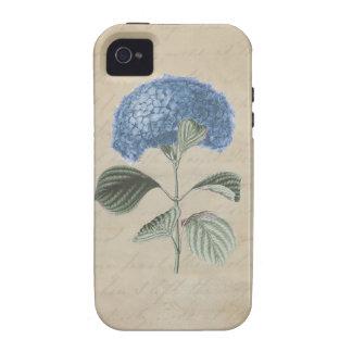 Hydrangea azul en el papel de la caligrafía del vi iPhone 4 carcasas